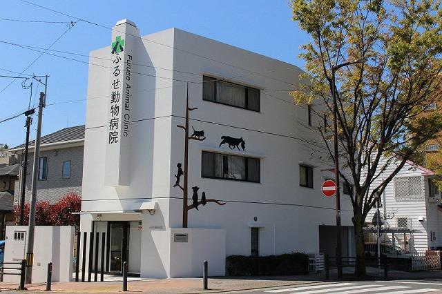 外観 再生医療 栄養療法 福岡市 鳥飼 ふるせ動物病院