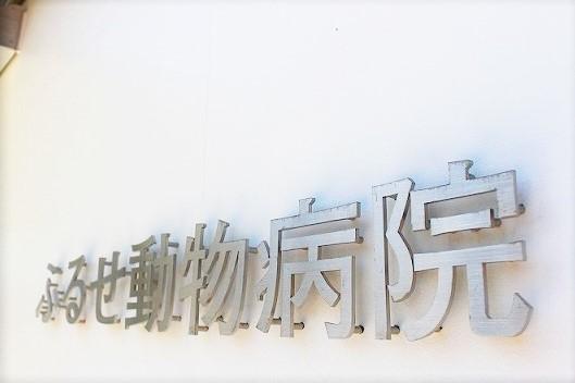 ふるせ動物病院紹介